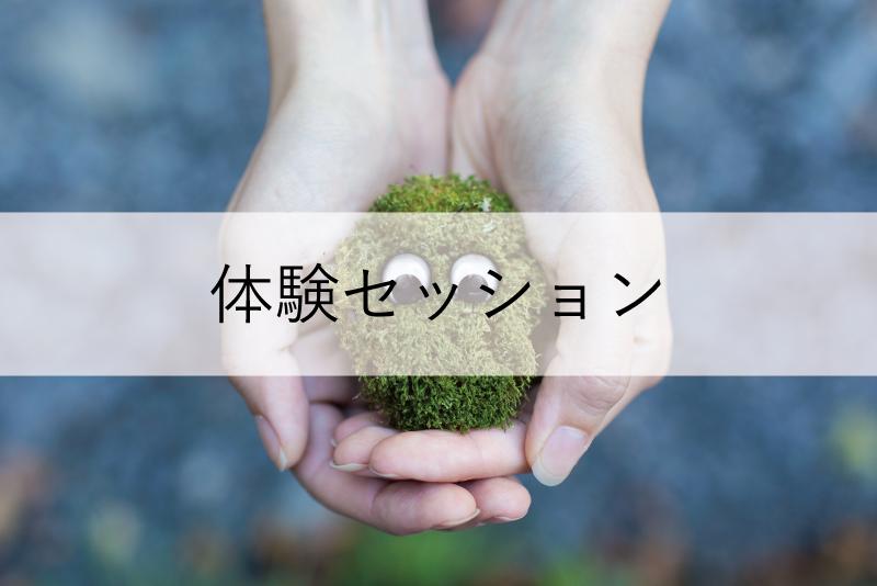 menu-image-taiken